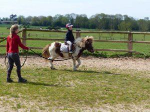 cours d'équitation enfant à poney shetland