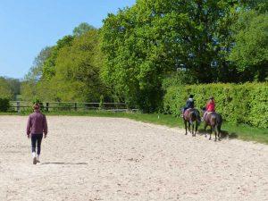 Ecurie les Grainvilleries : cours d'équitation
