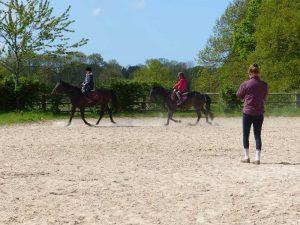 Cours d'équitation collectif