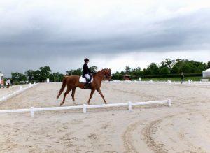 Ecurie les Grainvilleries : sortie concours à l'extérieur Cours d'équitation
