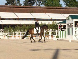 Ecurie les Grainvilleries : concours au Haras de Jardy Cours d'équitation