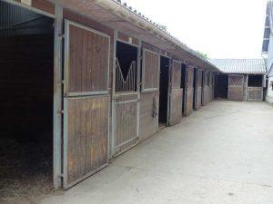 Ecurie Grainvilleries : pension pour chevaux au boxe écurie extérieure