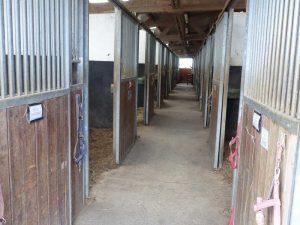 Ecurie Grainvilleries : pension pour chevaux au boxe écurie intérieure