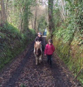 Promenade enfants poney shetland normandie