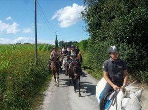 Ecurie les Grainvilleries : randonnée à cheval dans la campagne en Normandie