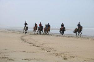 Ecurie les Grainvilleries : randonnées à cheval sur la plage en Normandie